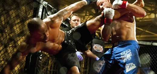 Why Professional Fighters Choose To Fight
