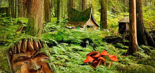 The Enchanted Forest Is Found In Revelstoke British Columbia