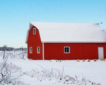 Winter Snow Covered Barn On Farm