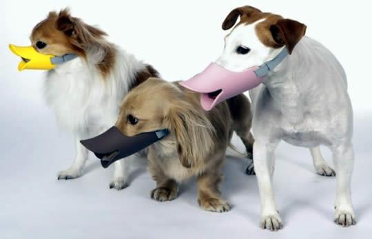 Oppo Dog Muzzle – Quark Quark