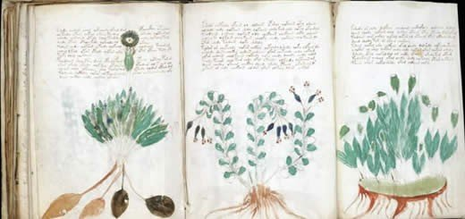 Is Computer Code The Key To Decoding The Voynich Manuscript?