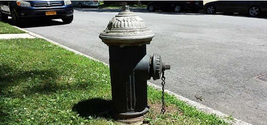 True or False - Fire Hydrant