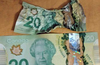 Canadian Money Melts