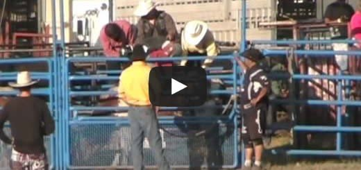 Bull Riding Prince George