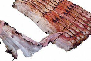 Aching For Bacon? Then The Fou Lard Bacon Scarf Is For You