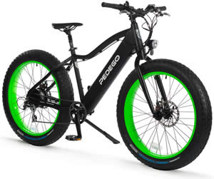 Pedego Electric Fat Tire Bike - Trail Tracker