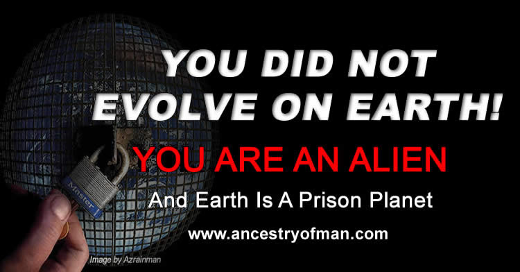 Alien Human Origin Ancestry Of Man Prison Planet