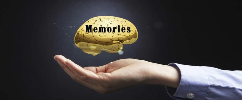 Memories Open Hand With Gold Brain
